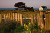 Fence and Seaside Cottage