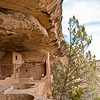 "Balcony House.  The ancient Puebloans settled at Mesa Verde around 600/700  AD.  These dwellings were built  during the classic period of 1000-1300.  After 1300 they moved.  The story is this was the Anasazi people and they simply vanished.  The Indians believed life originated from the center of the earth and at death you went ""to the other side"" or back to the center.  Actually the ancient Puebloans migrated south mostly to New Mexico and Arizona.  The Zuni's, Acoma's and Hopi's are all descendants."