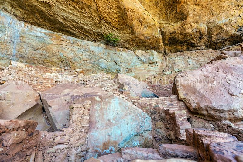 44.  Step House Petroglyphs