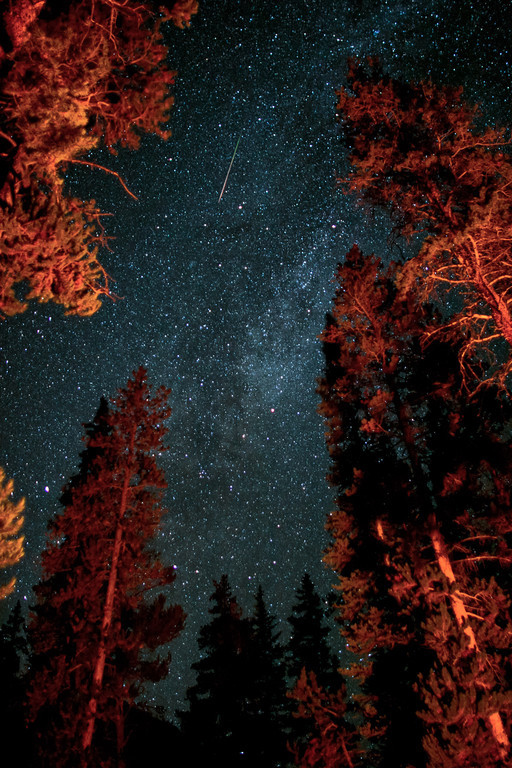 Perseid Meteor over a campfire near Aspen Colorado