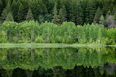 Aspen Lake, Methow Valley