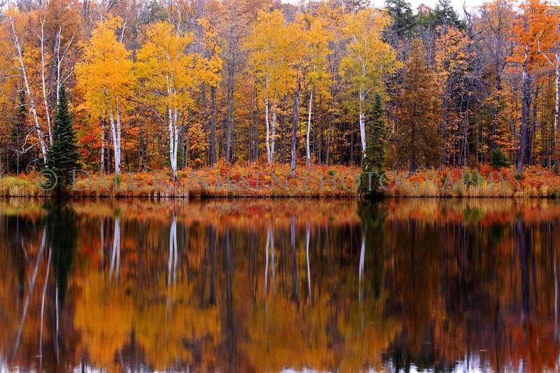 Mill Pond at Alberta, Michigan