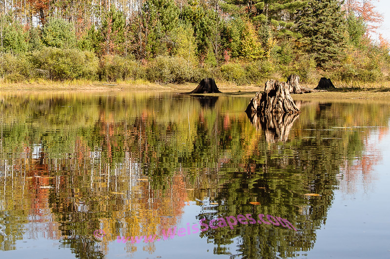 Fall colors on the Michigamme Reservoir from a kayak.