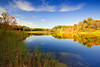 Ohio, Cuyahoga Valley National Park, Indigo Lake, Fall Colors Foliage, Reflection Landscape 俄亥俄 坎格瑞沼泽国家公园 风景 秋色