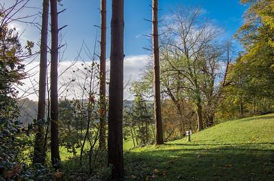 Arley Arboretum - Autumn 2017