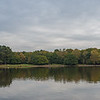 An autumnal Sutton Park