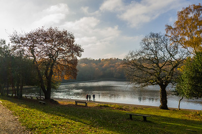Blackroot Pool, Sutton Park