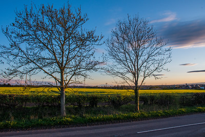 Sunset around Baswich