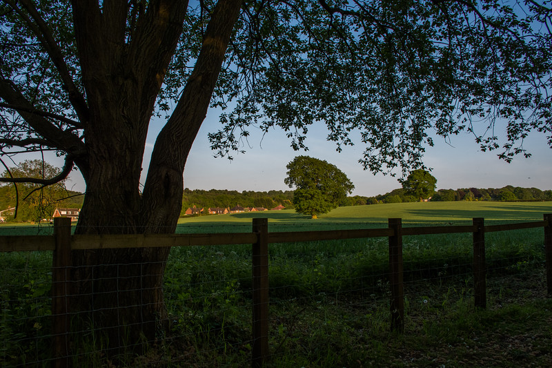 Milford to Walton - An evening walk