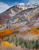 Decked In Color - Maroon Creek Road, Aspen, Colorado
