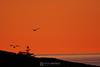 North shore sunrise, Tofte MN