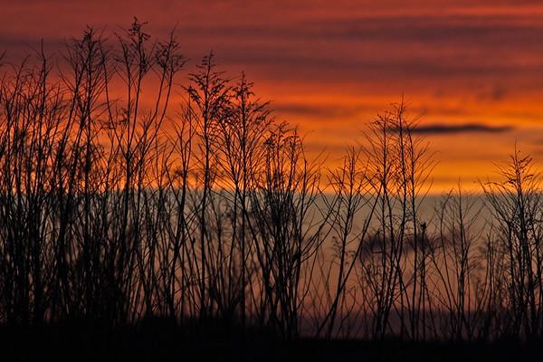 Burnt Sky...