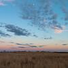 Minnesota Spring Evening...