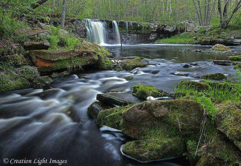 Wolf Creek Falls - Spring