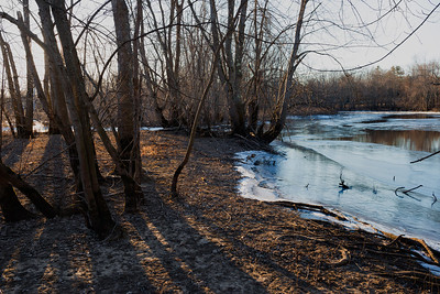 20130127. Concord River in Minute Man NHP.