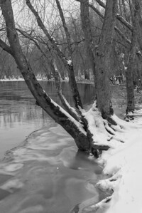 20130217. Concord River in Minute Man NHP