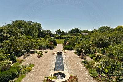 Rose Garden from above