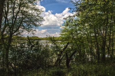 Storrs Lake Road