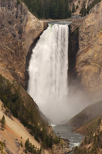 Lower Canyon Falls Yellowstone Nat'l Park