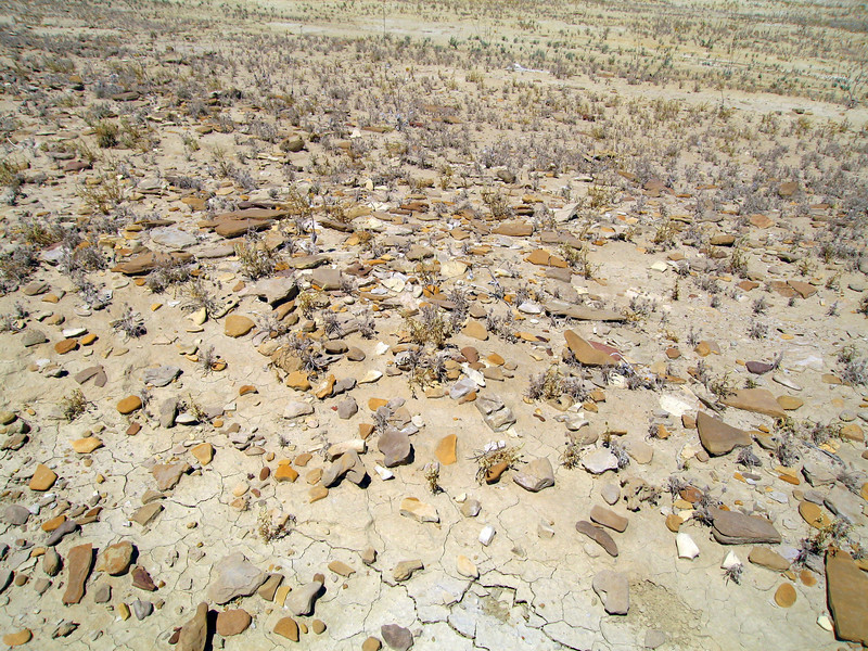Approx. 1 mi southwesterly of the Salton Sea, CA. 19 Apr 2010
