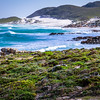 Cape Point - Fynbos & seascape