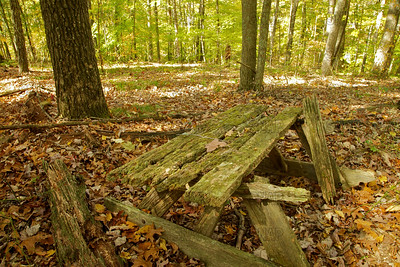 Picnic's Past - Brown County State Park, near Nashville, IN.