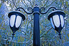 Lamp post in Winter