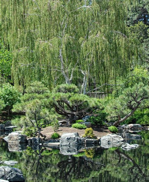 Beautiful reflection at Denver Botanic Gardens