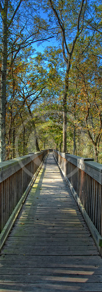 HDR of the Deep Fork National Wildlife Refuge - Cussetah Bottoms Boardwalk Trail in Schulter Oklahoma
