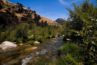 The Arroyo Seco is anything but: a slender river courses through the park located within inland Monterey County, California.