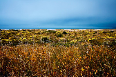 Dusk and stormy skies unite on the horizon above the lush shores of Arcata Bay in northern California.