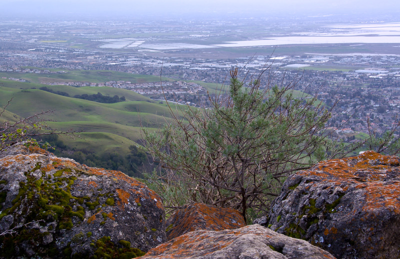 A view of the East Bay on an overcast day.