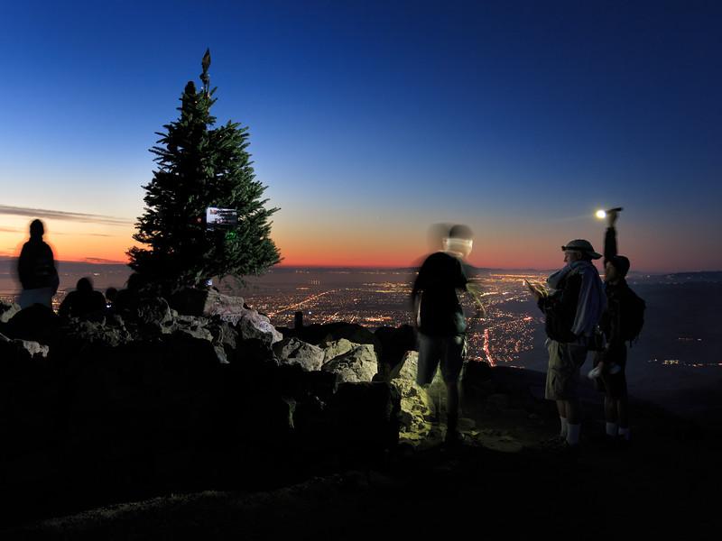Mission Peak Christmas Tree