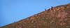 Hikers descend Mission Peak.