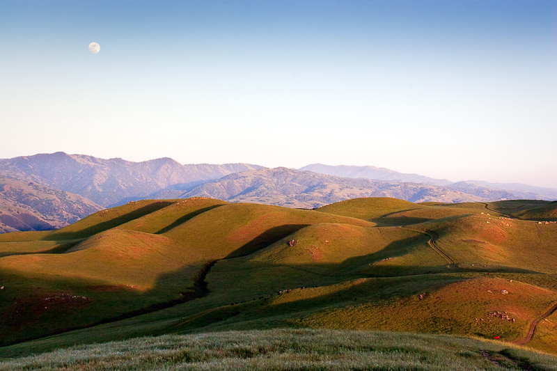 The moon rises above Mission Peak on a pleasant May afternoon. If you look carefully, you can see a cow illuminated bright red by the setting sun.