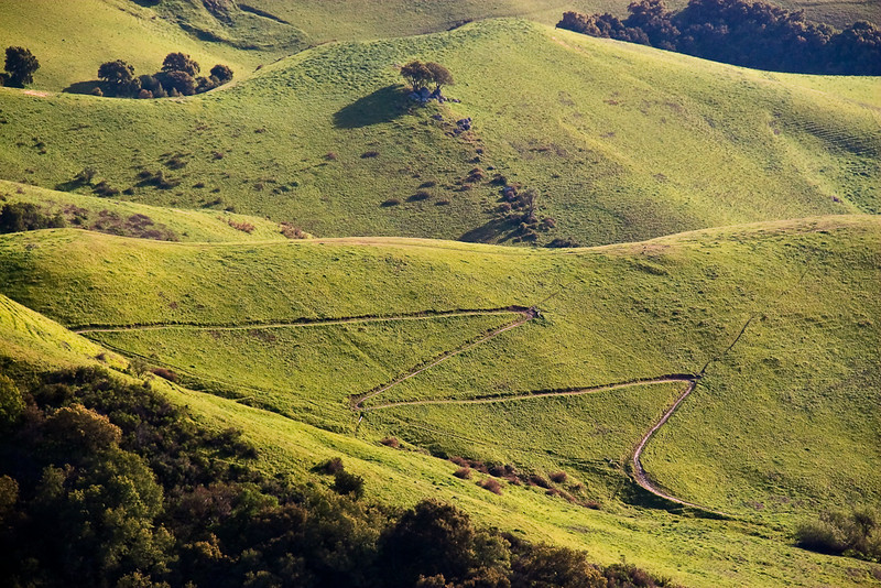 This zig-zag trail is part of the Ohlone Wilderness 50k course that I'll be running on May 30th. Yikes! Only 8 weeks away!