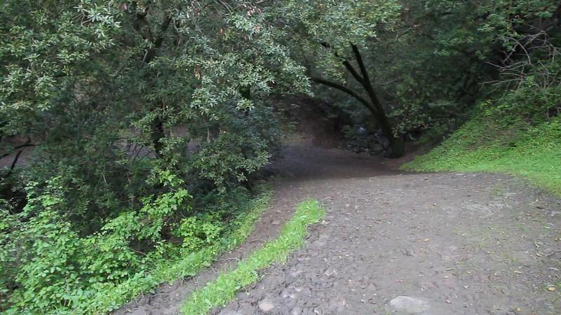 Mission Peak Rains