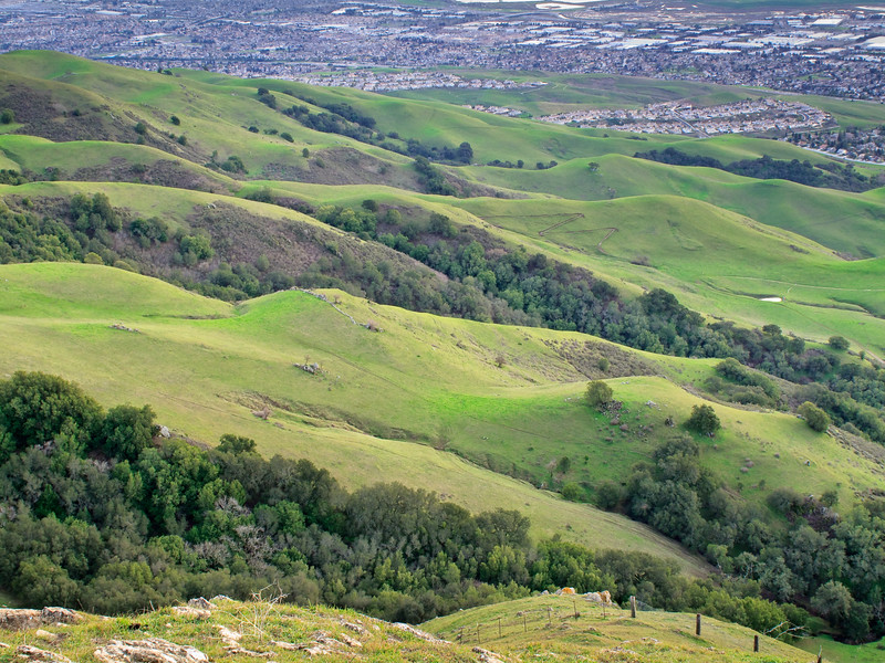 A view of the South Bay from Mission Peak.