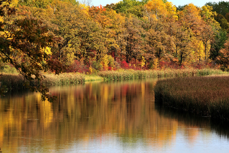 Fall colors along the Mississippi River in northern Minnesota.