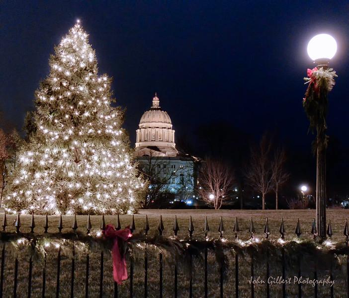 Capitol Christmas 2014