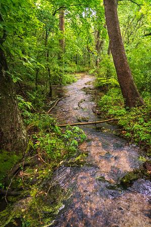 River at George Washington Carver National Monument