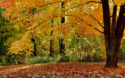 Riverview Park Hannibal MO
