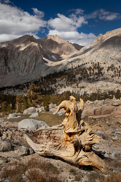 Stump and peaks, Miter Basin