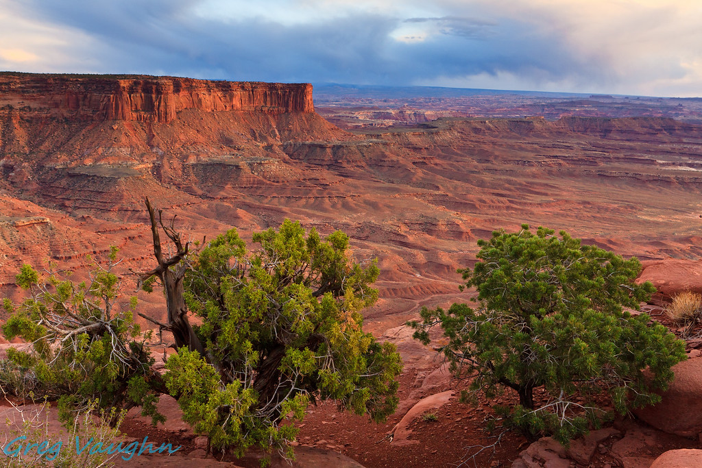 View at Green River Lookout in Canyonlands NP, Utah