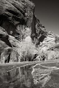 Rim Ice - Canyon De Chelly, AZ