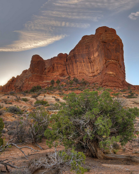 Arches-NP-8X10-Web
