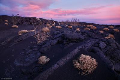 Hawaiin Desert  - Mojave Desert  A desert lava field resembling a Hawaiin landscape.
