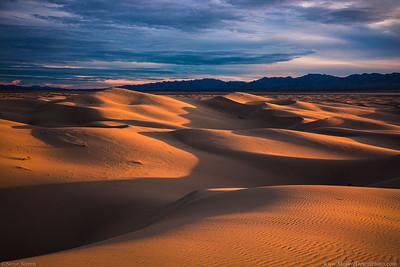 Mojave Desert Dunes at Sunset in the Heart of the Mojave Desert.