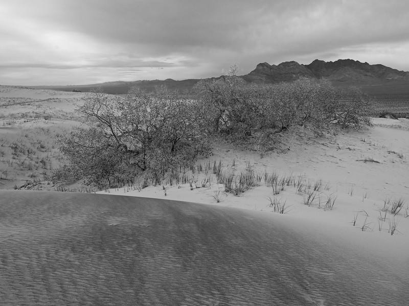 Kelso Dunes under an overcast sky