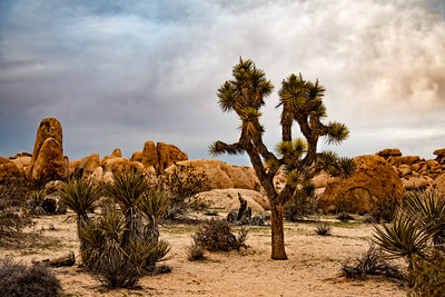 Mojave and other SoCal locations